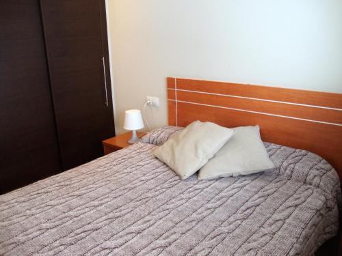 Фото отеля Apartamentos Canillo Pie Pistas 3000