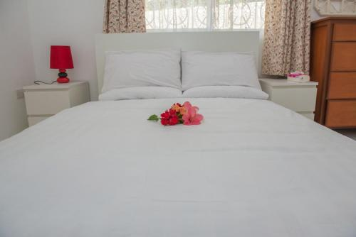 Cotton Rose Self Catering,