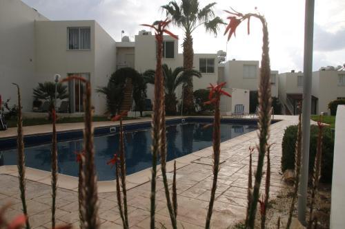 Evros Peyia & Coral Bay Seaview Apartment