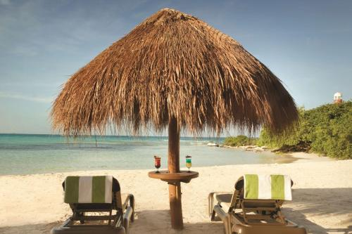 Boulevard Kukulcan, Manzana 51, Lote. 7, Quintana Roo, Cancun 77500, Mexico.
