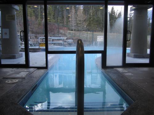 Platinum Suites Resort - Vacation Rentals - Photo 7 of 44