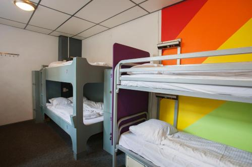 Bunk Bed in 12-Person Mixed Dormitory Room