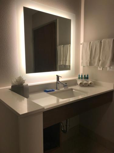 Holiday Inn Express & Suites Houston Southwest Galleria Area, an IHG Hotel - image 3