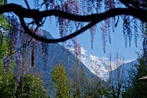 Double room n°5 with Jungfrau view and private bathroom across the hall