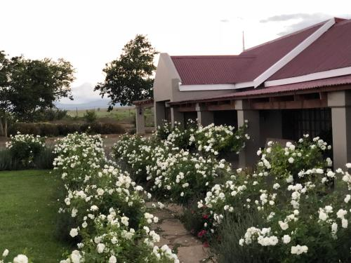 . Mountain View Country Guest House