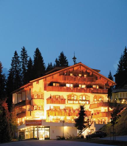 Hotel Almhof - Hochfügen
