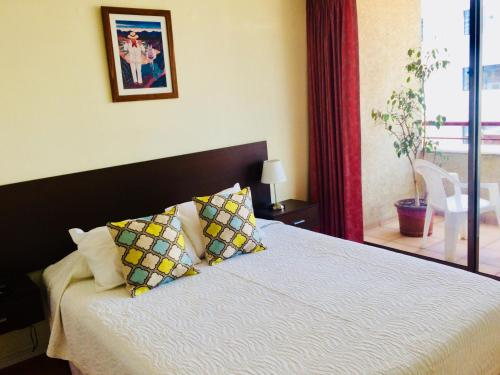 Hotel Aconcagua El Bosque