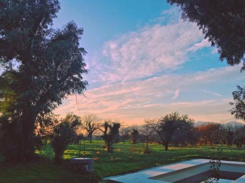 Ponteronico Resort - Accommodation - Sessa Aurunca