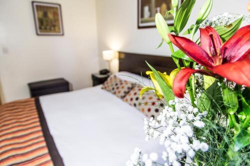 Hotel Mendoza - Apartment