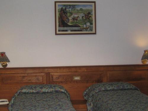 Фото отеля Hotel Villa Plinia