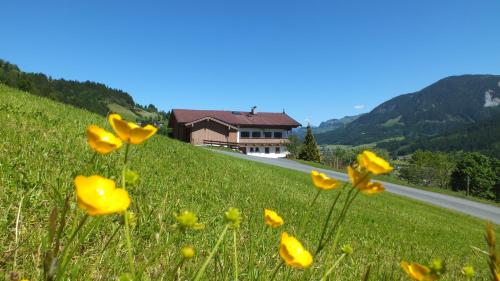 Franbichl Brixen im Thale