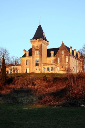 Kasteel-overnachting met je hond in Chambres d'Hôtes Château de Bellevue - Saint-Avit