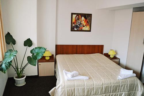 Family Hotel Miglena - Photo 8 of 49