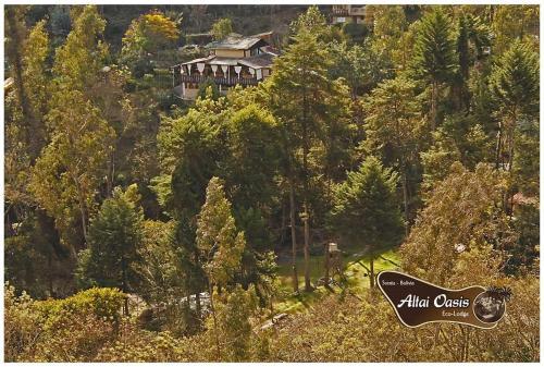 Altai Oasis Lodge
