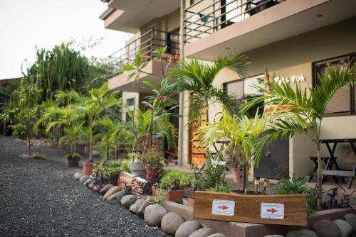 HotelTamarindo Sunshine