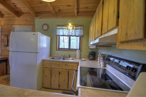 Birch Tree Cabin - Ellijay, GA 30540