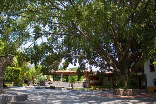 . Jardín Cerritos Xochitepec