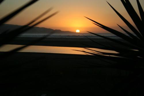 . Ahipara Surf Lodge