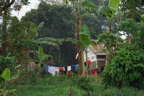 Eco Agric Uganda Cottages, Bugahya