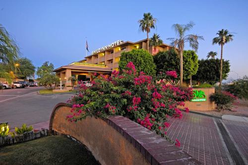 . Shilo Inn Yuma