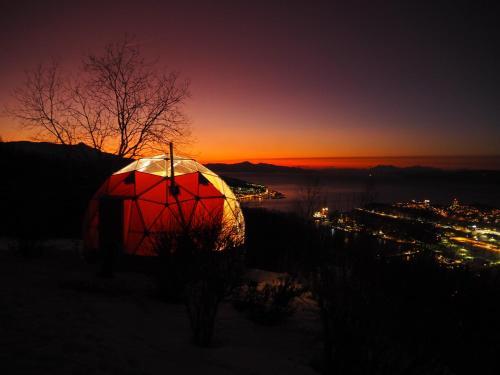 Narvik Adventures AS - Hotel - Narvik