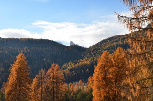 Overlooking the Dolomites Cortina d'Ampezzo