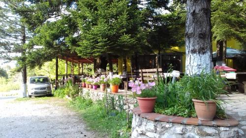 Guesthouse Alberti Llogara