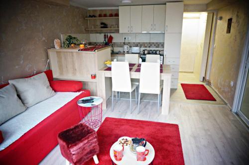 . Apartment Kamencic