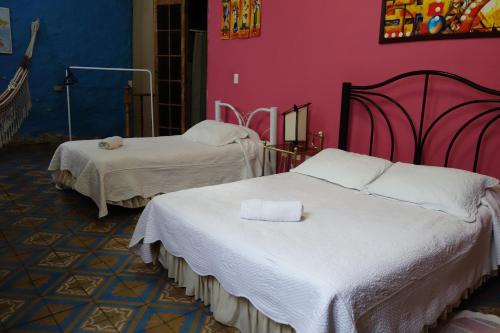 Фото отеля Casa Bellavista Hostel