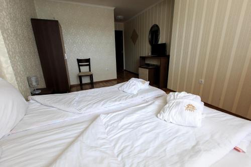 Hotel Nikol - Photo 7 of 43
