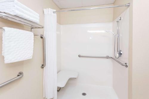 Days Inn & Suites by Wyndham Savannah North I-95 - Port Wentworth, GA GA 31407