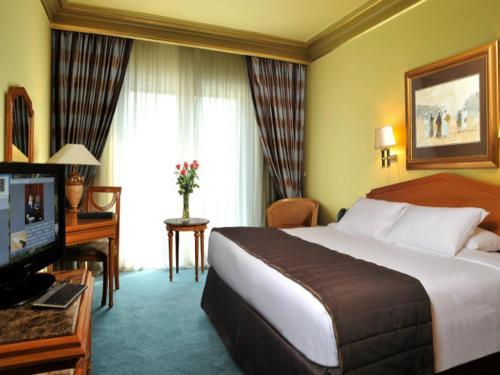 Concorde El Salam Cairo Hotel & Casino - image 3