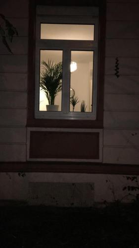 Ana Apartment - image 4