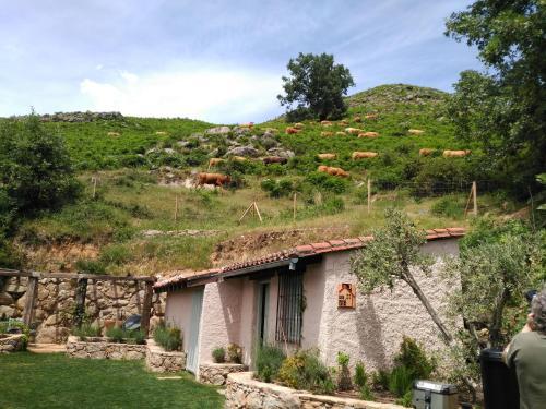 Casa de 2 dormitorios El Vergel de Chilla tiene 3 alojamientos Abejas 1 Abejas 2 y Libélula 38