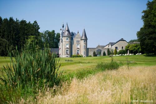 Kasteel-overnachting met je hond in Chateau D'Hassonville - Aye