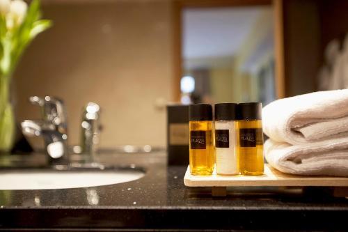 Фото отеля Hotel Ski Plaza & Wellness