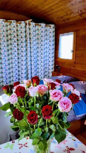 Les Roses de Jonzac