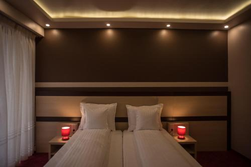 . Homorod Hotel
