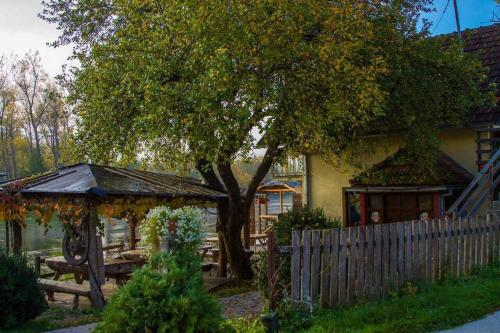 Bed and Breakfast Family Djukic - Accommodation - Šipovo