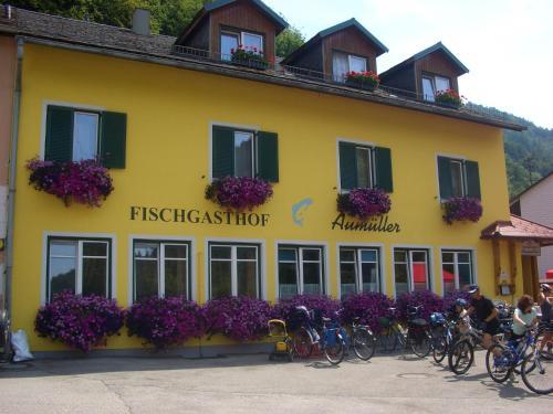 . Fischgasthof Aumüller