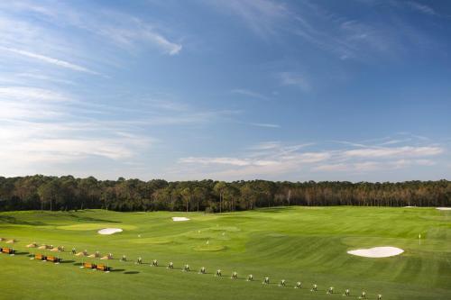 10100 Dream Tree Boulevard, Orlando, 32836, Florida, United States.
