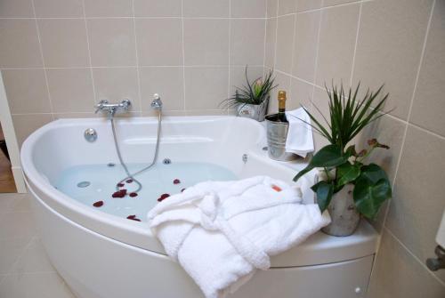 Suite - Einzelnutzung Hotel Villa Monter 1