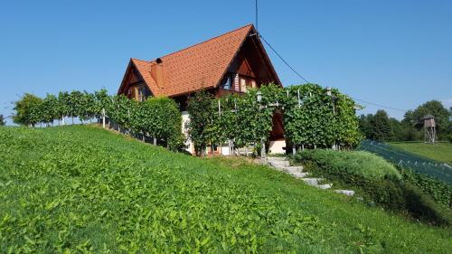 Vineyard Cottage Berus