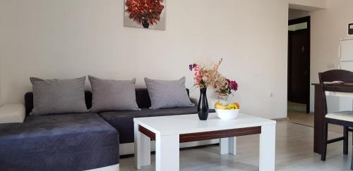 . Family Aparthotel Vintegra