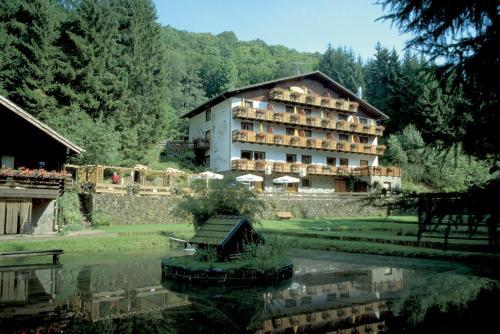 . Wolffhotel