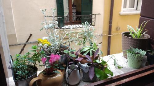 Sestriere San Marco 3389, 30124 Venice.
