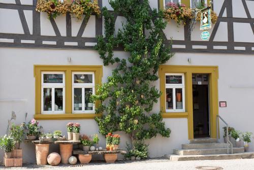 . Ferienwohnung Schweizer