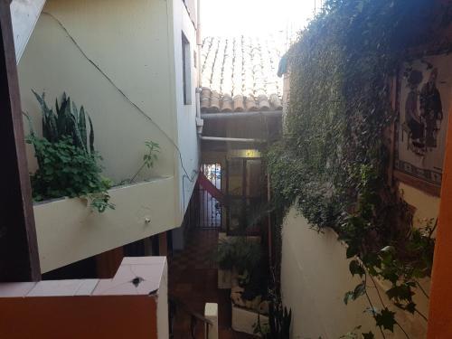 Hotel Todos Santos Inn szoba-fotók
