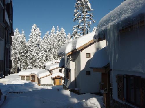 Saint George Holiday Village - Photo 8 of 43
