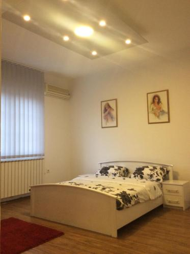 . Apartman br.1